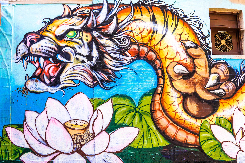 Live Dragon Tiger (Pragmatic Play) Game Review