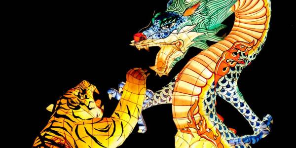 Dragon Tiger: Ett populärt live casinospel